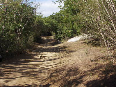 Path to Spring Bay Virgin Gorda